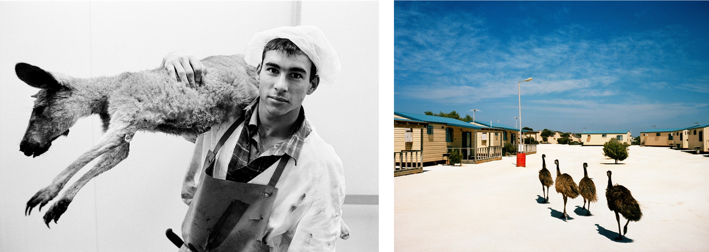iris, irismagazine, iris magazine, Paul Blackmore, Trent Parke, Australian Photography